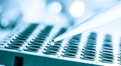 幹細胞治療 リスク
