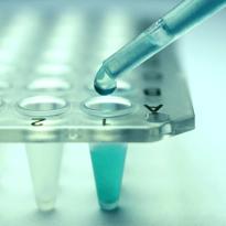 幹細胞 再生医療